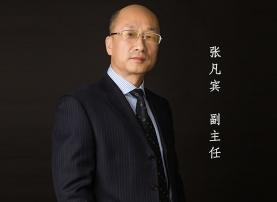 张凡宾副主任